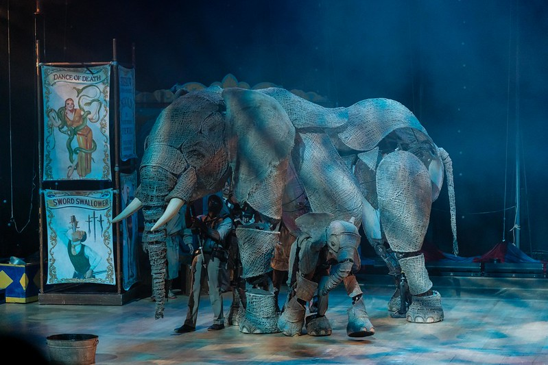 Circus 1903 at the Lowry - elephants
