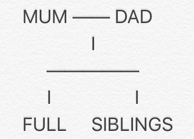Explaining Blended Families To Kids - Full siblings