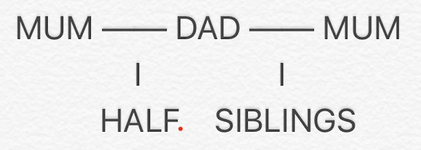 Explaining Blended Families To Kids - Half Siblings