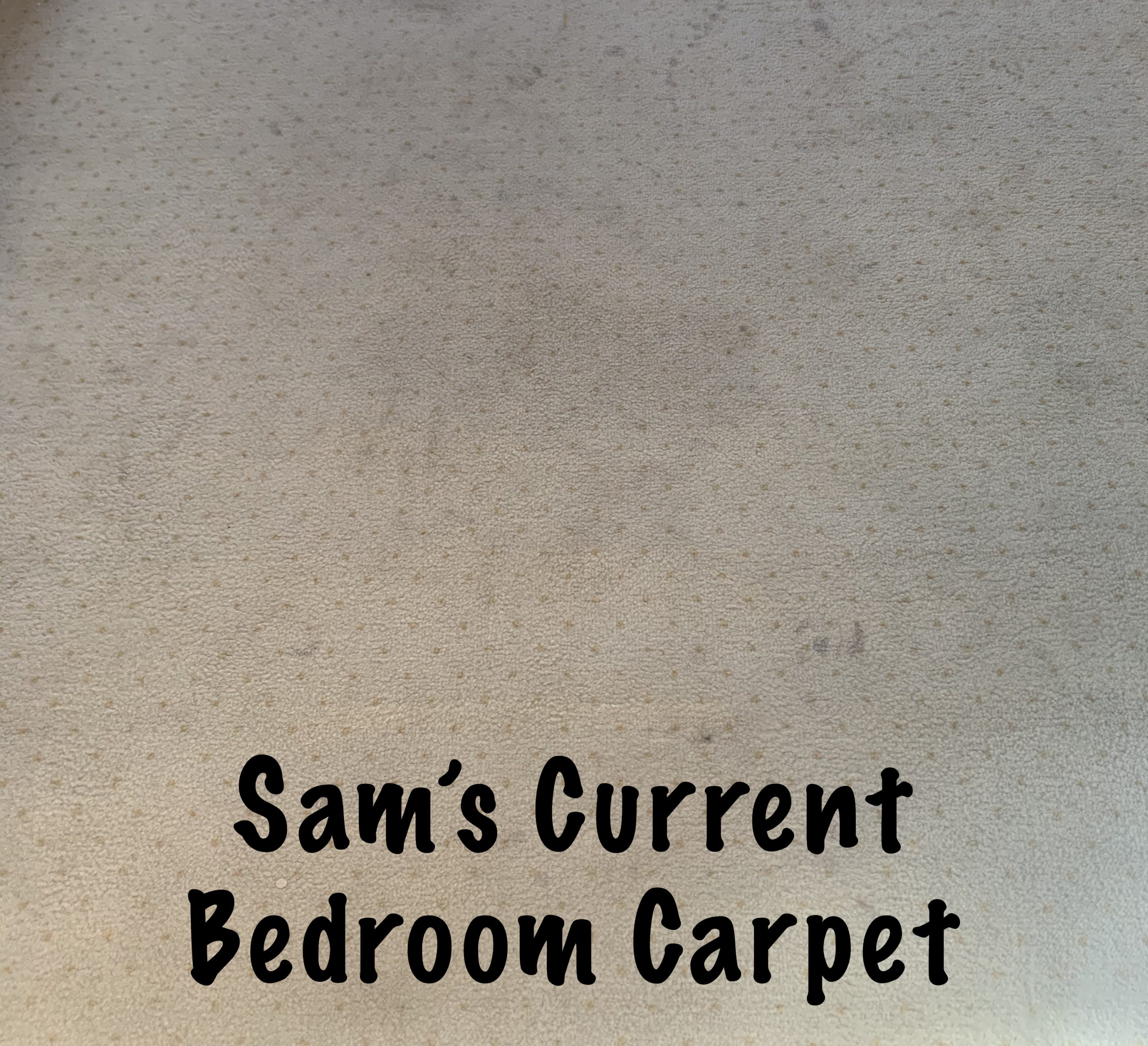 Sam's current bedroom carpet - flooring options for a special needs bedroom